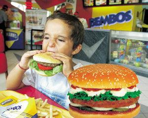 윤방부 교수의 '햄버거를 위한 변명'