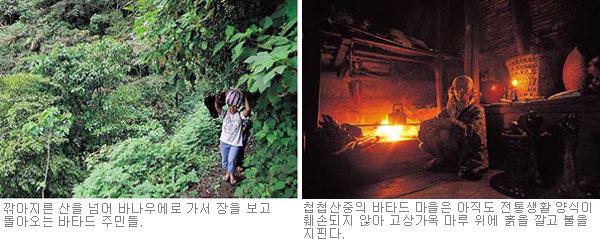 '헤드 헌터' 자손들의 살벌한 논 농사