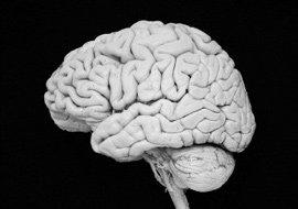 '두뇌 조깅''정신 에어로빅'으로 뇌 노화 막자!