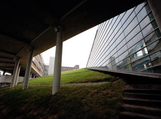 캠퍼스에 부는 '예술건축' 바람