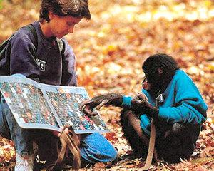 인류는 침팬지와 1.2% 다른, '털 없는 유인원'일 뿐