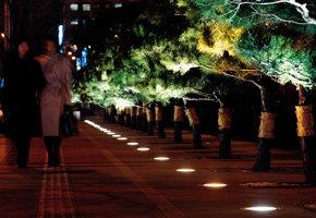 서울의 밤, 빛의 유혹
