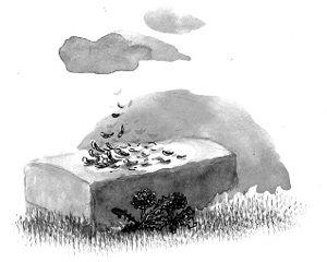 장례식 위의 바람과 구름