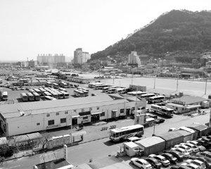 노무현 대통령 후원자 박연차 토지매입 논란