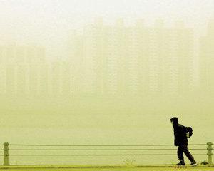 중국의 무지와 야만이 부른 지구 황폐화