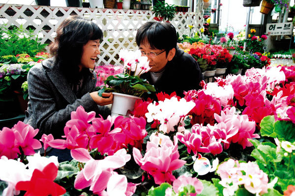꽃 피네,  봄 왔네!
