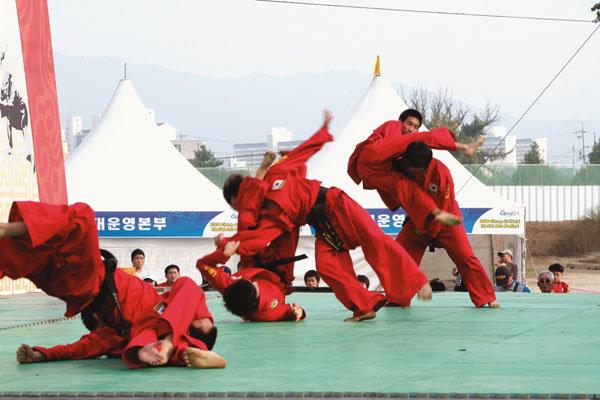 충주세계무술축제