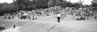 지속가능한 경영, 지속가능한 골프