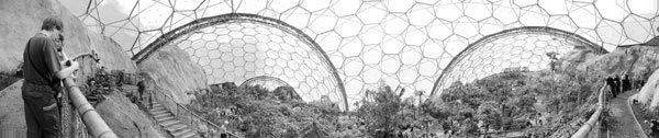 현대판 세계 각지 식물이 다 모인 '노아의 방주'