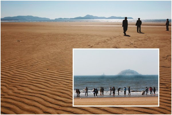바람과 모래가 빚어낸 예술작품 신두리 해안사구