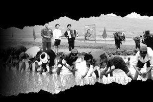 북한 협동농장의 어두운 오늘