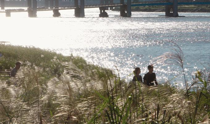 사랑의 마법 흐르는 한강