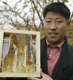 양봉 농가 덮친 '꿀벌 에이즈'