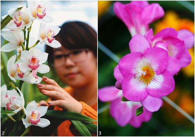 기지개 켜는 봄꽃 향기