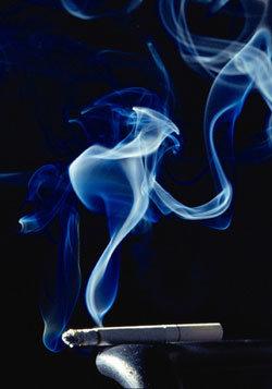 슬픔과 감상, 수탈의 담배
