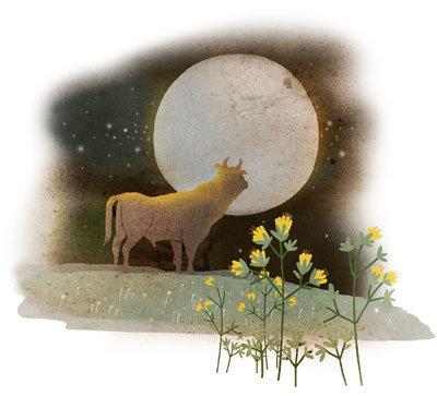달과 황소