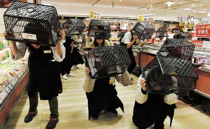 참사로 배우는 일본 참사로 싸우는 한국