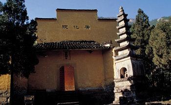 신라 금지차를 중국에 전한 '茶佛'