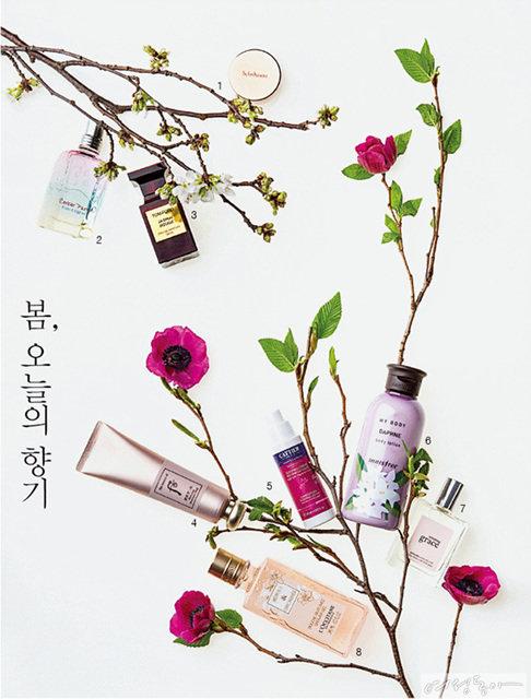 봄 오늘의 향기
