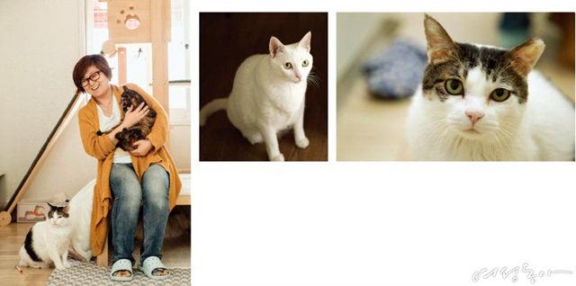 개와 고양이가 우리에게 가르쳐준 것들
