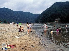 강원 홍천