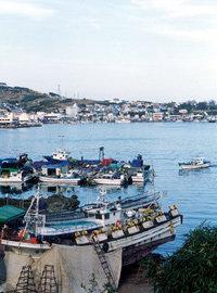 포항 구룡포