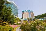 '해외한인 경제인 하이원에 모인다', 월드옥타 행사 개최