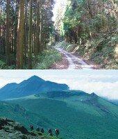 [일본 남규수에서 맛보는 자연 트레킹] 아기자기한 숲길부터 화산지대까지