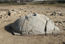 강릉서 고려 시대 귀부 발견, 머리 부분은 결실된 상태