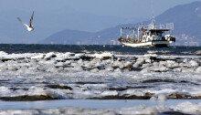 바닷물도 꽁꽁… '냉동실 한파' 26일 평년 기온 회복