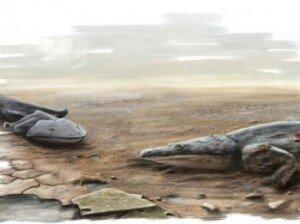 2m 고대 도롱뇽 화제… 공룡 등장 전까지 가장 강력했던 포식자