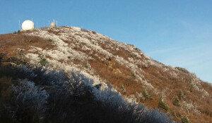 설악산에 올가을 첫 상고대… '11월 때이른 추위'