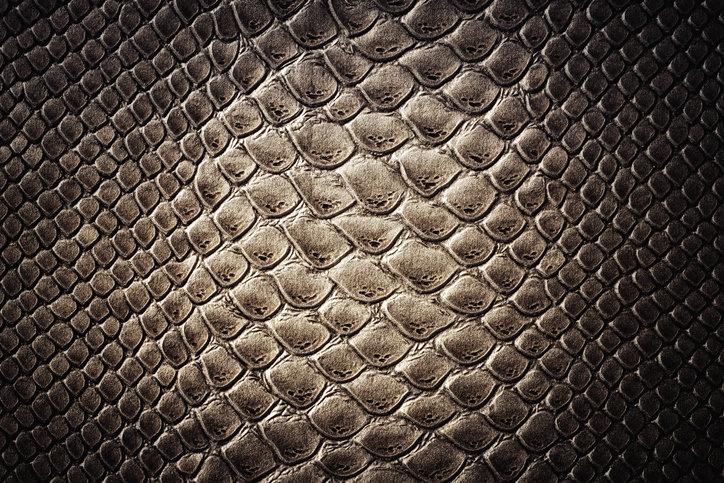 샤넬, 명품업계 최초로 악어·뱀가죽 사용 안한다