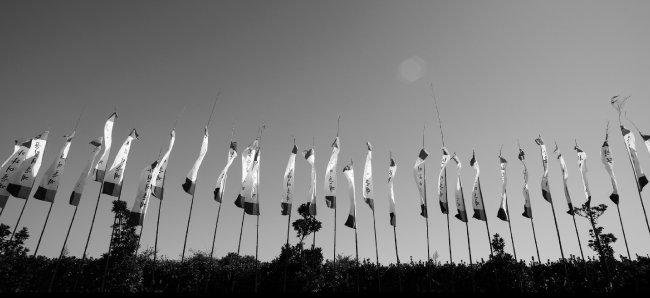 제주시 세화리, 해녀축제(Jeju-si Sehwa-ri, Haenyeo Festival) 2013_10