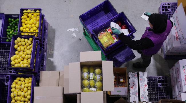 한 직원이 물류센터에 입고된 레몬, 사과, 배, 아보카도 등을 확인하고 있다. [박해윤 기자]