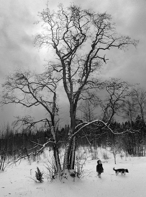 마이클 케나 & 펜티 사말라티 Snow Land 展