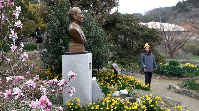 밀러가든 내에 있는 고 민병갈 원장의 흉상. 바로 앞에 그가 생전에 좋아했던 개구리 조각이 놓여 있다. 사진 왼쪽 목련은 레오나르드 메셀. [김형우 기자]