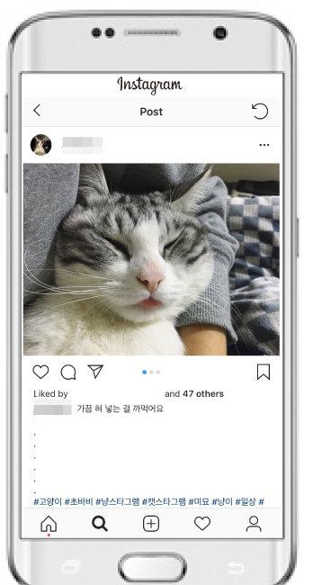 [초바비 계정]