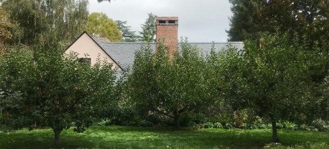 정원에 사과나무가 늘어선 스티브 잡스 집 전경.