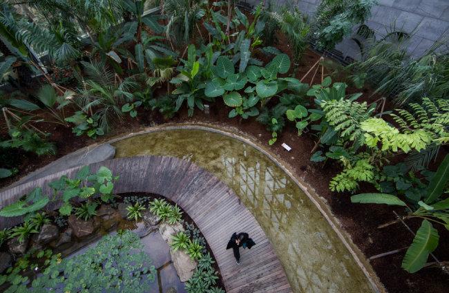 위에서 내려다본 온실 풍경. 온실 안에는 열대 도시 4개, 지중해성 기후 도시 8개의 식생이 각각 구현돼 있다. 세계 12개 도시 정원이 한자리에 모여 있는 셈이다.