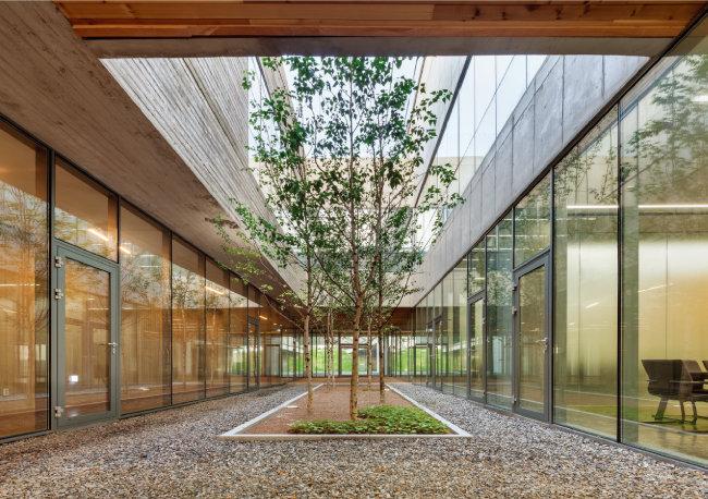 연구소 사무실과 공장건물 사이로 자작나무를 심어놓은 중정. [사진·신경섭]