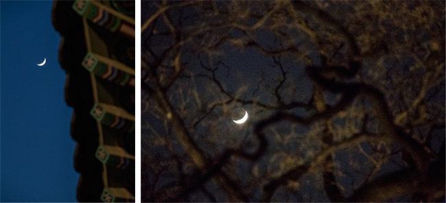 돈화문 위의 달.(왼쪽) 궁궐 나뭇가지 사이로 달이 보인다.