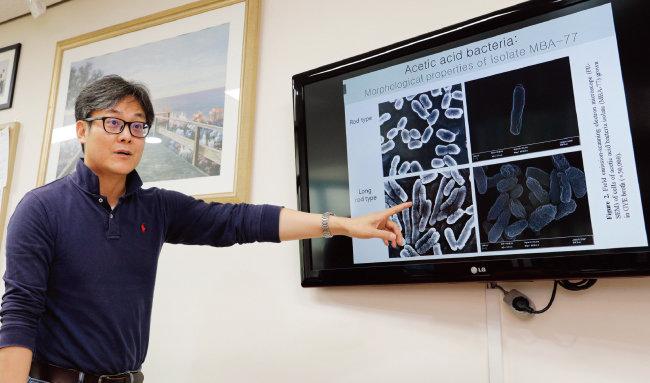 백상호 전북대 식품영양학과 교수는 막걸리 미생물 연구 과정에서 식초균 생성 메커니즘을 연구하는 데까지 이르렀다. [박해윤 기자]