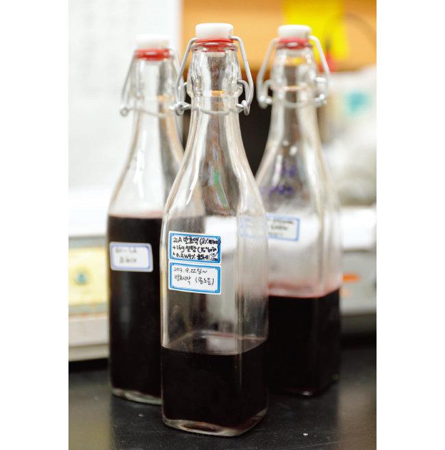 무주 복분자식초 발효 샘플. [박해윤 기자]