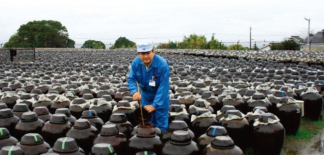 일본의 대표 장수마을인 가고시마현 후쿠야마 마을에서 200년 전통을 이어오고 있는 흑초 제조회사 '사카모토 양조'.  [동아DB]