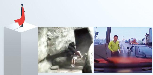 아이를 구한 고릴라의 모습(왼쪽). 5월 12일 제2서해안고속도로를 달리던 사고 차량의 블랙박스에 찍힌 '투스카니 의인' 한영탁 씨. [shutterstock, 유튜브 캡처]