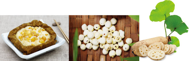 연잎밥, 껍질을 벗긴 연자, 구멍 수가 적고 통통해야 맛있는 연근(왼쪽부터).