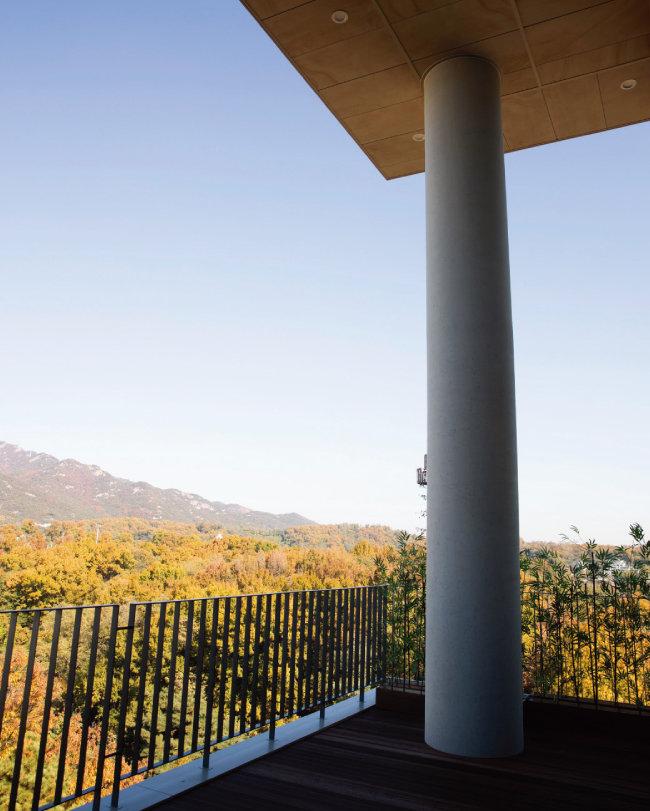 오피스 공간 한구석에 설치된 테라스. 하늘과 숲을 바로 접할 수 있다. [지호영 기자]
