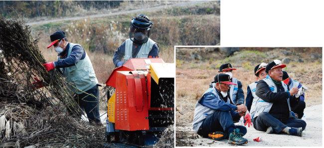 산불 인화물질 제거반원들이 깻단 등 인화물질을 파쇄하고 있다. [박해윤 기자]