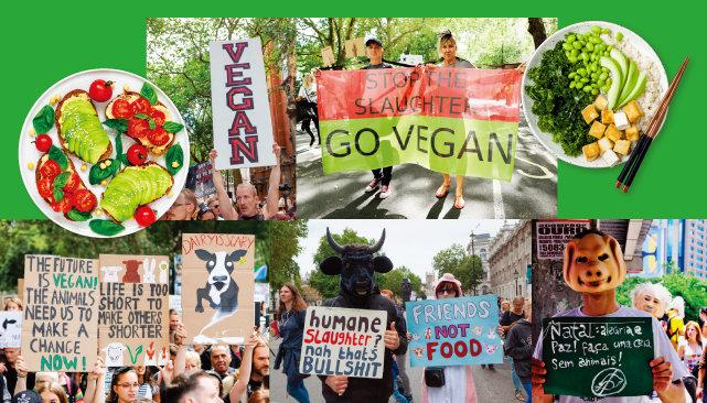 2019년은 절대채식주의자 비건의 해가 될 것인가. 2018년 영국, 미국, 캐나다, 브라질 비건들의 육식 반대 시위에 등장한 다양한 모습들. [shutterstock, REX]